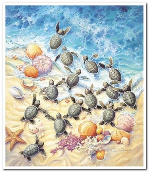 Green Turtle Hatchlings - SunsOut - 550 Stukjes